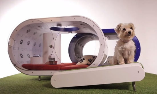 Dream Doghouse: a casa do futuro para os cães!