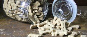Receita Fácil: Biscoitos caseiros para seu cão