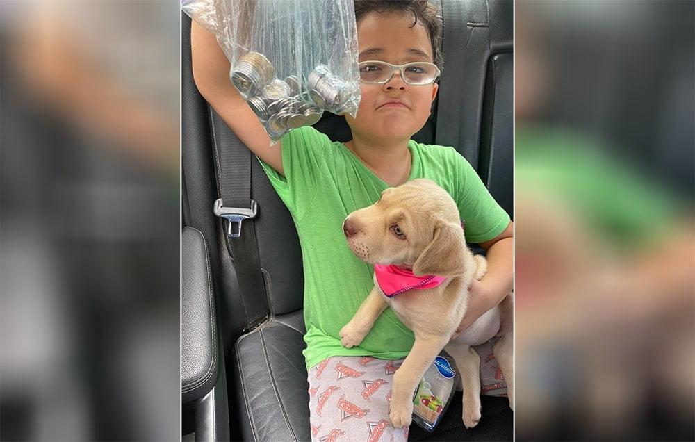 Menino faz poupança para pagar vacina e comida para seu cachorro