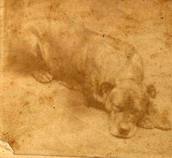 Pessoas continuam deixando ossos no memorial de um cão herói