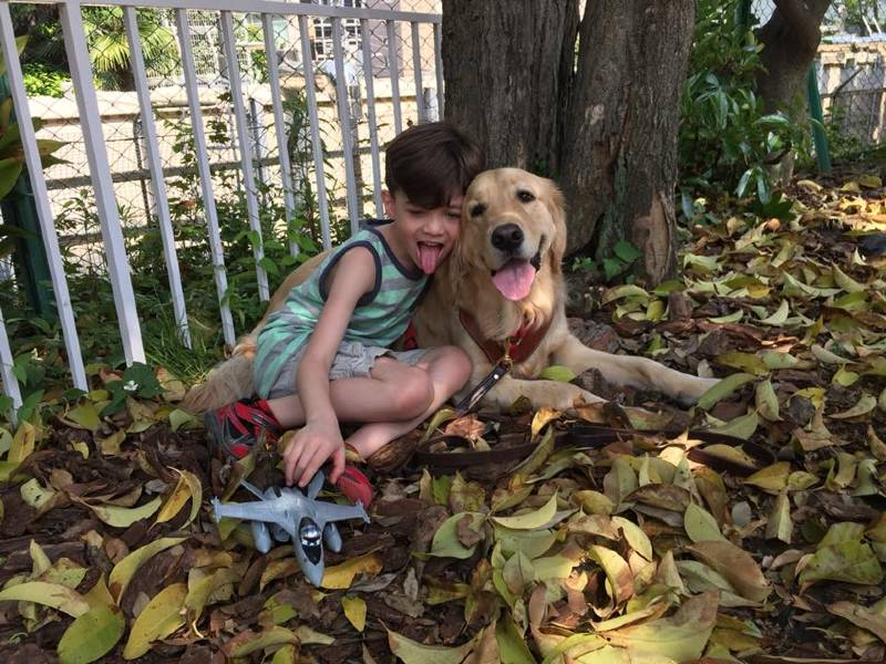 Menino autista não suportava ser tocado até conhecer seu cão de serviço